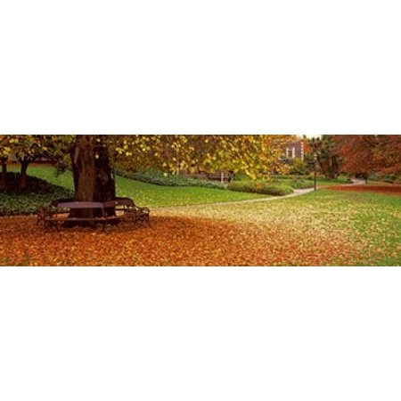 Park At Banks Of The Avon River Christchurch South Island New Zealand Canvas Art   Panoramic Images  18 X 6