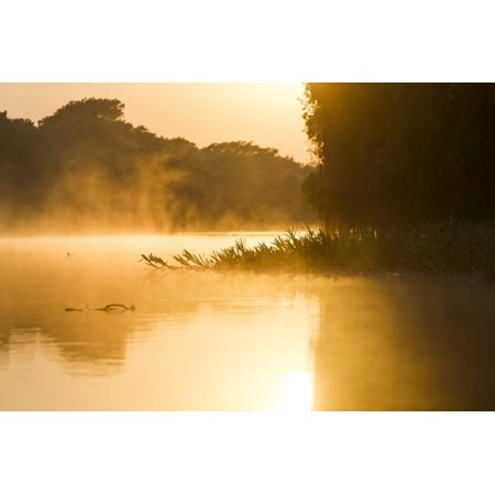 Brazil, The Pantanal, Rio Cuiaba. The mist rises off the river in the early morning. Print Wall Art By Ellen Goff