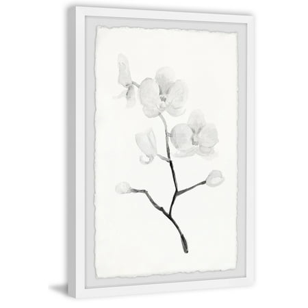 White Orchid Branch II Framed Painting Print Orchid Botanical Prints
