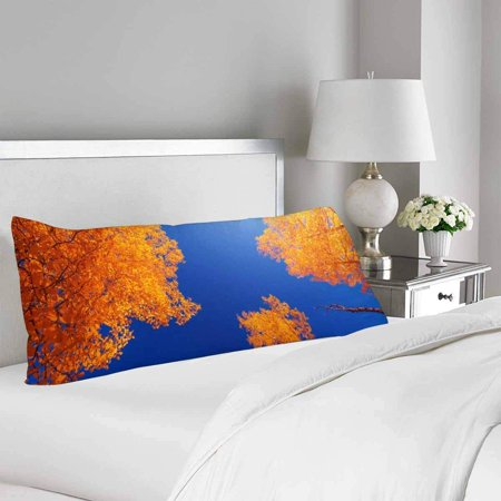 GCKG Forest in Autumn Blue Sky Fall Tree Leave Body Pillow Covers Case Protector 20x60 inches - image 1 de 2