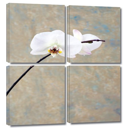(ArtWall 'Orchid Blossom' by Elena Ray 4 Piece Photographic Print on Wrapped Canvas Set)