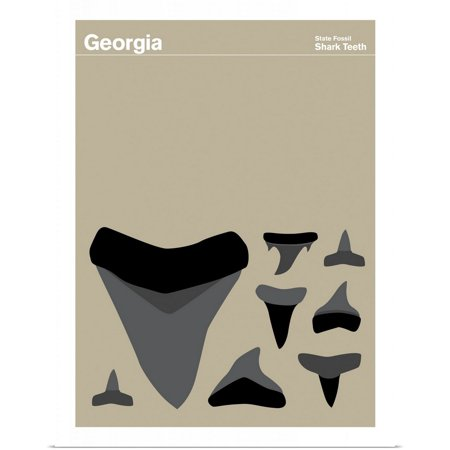Great BIG Canvas | Rolled Print Collection Poster Print entitled State Posters - Georgia State Fossil: Shark Teeth