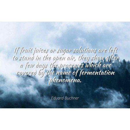 Eduard Buchner - Famous Quotes Laminated POSTER PRINT 24x20 - If fruit juices or sugar solutions are left to stand in the open air, they show after a few days the processes which are covered by the n