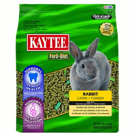 Kaytee Forti-Diet Dental Rabbit 4LB (Rabbit Classic Diet)