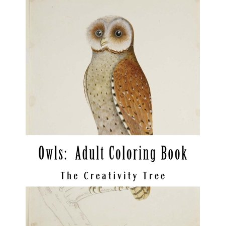 Owls: Adult Coloring Book (Paperback)