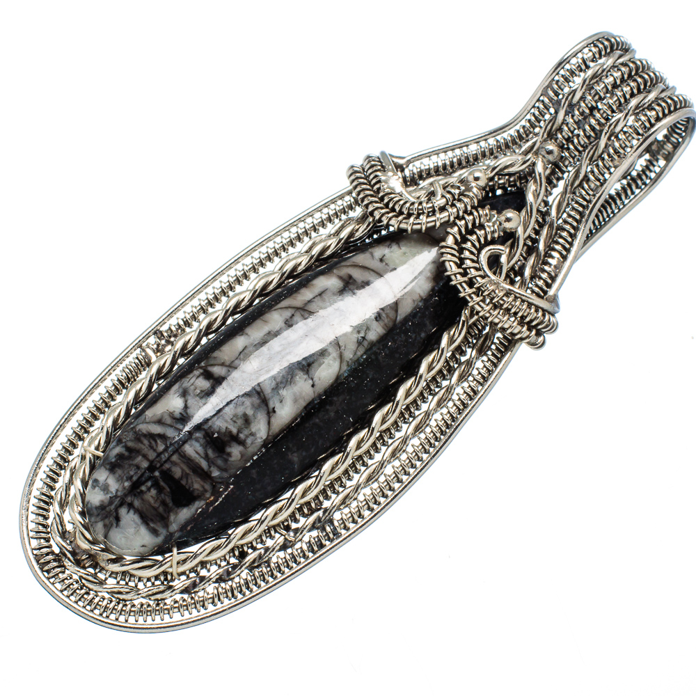 """Ana Silver Co Huge Orthoceras Fossil Pendant 2 3/4"""" (925 Sterling Silver) - Handmade Jewelry PD603620"""