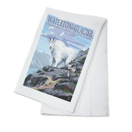 Waterton Glacier International Peace Park   Mountain Goat   Baby   Lantern Press Poster  100  Cotton Kitchen Towel