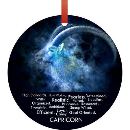 Zodiac Capricorn Character Personality Traits Round Shaped Flat Aluminum Semigloss Christmas Ornament Tree Decoration ()