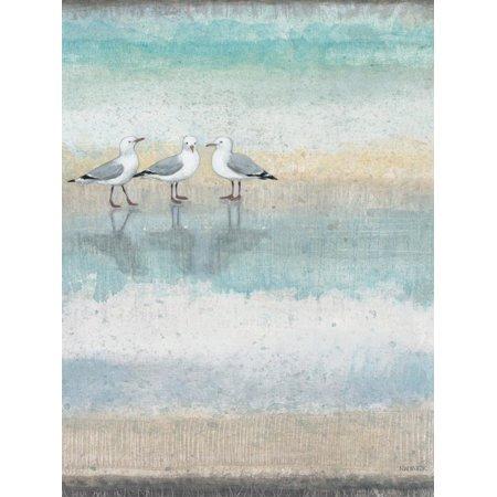 Sea Glass Shore 1 Coastal Shore Birds Seagulls Print Wall Art By Norman Wyatt Jr. ()