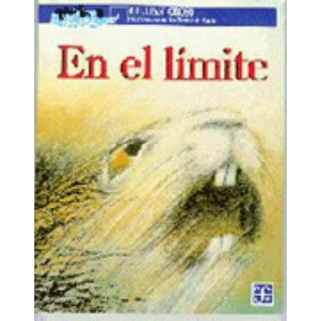 En el limite (A la Orilla del Viento) (Spanish Edition) [Paperback] [Jan 01, 1998] Cross Gillian