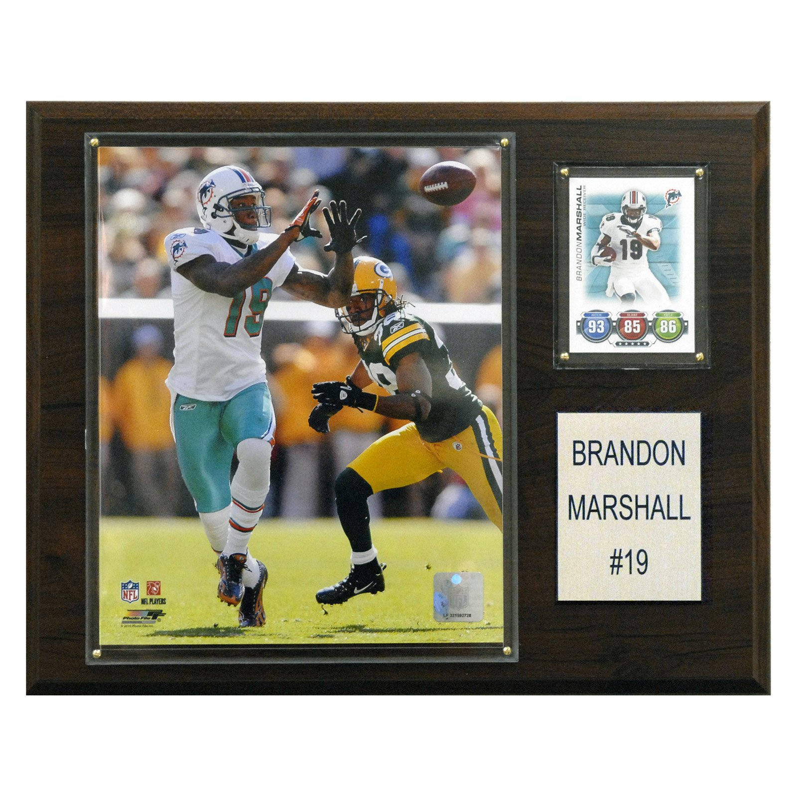 C&I Collectables NFL 12x15 Brandon Marshall Miami Dolphins Player Plaque
