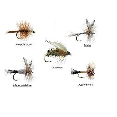 Fly Fishing Assortment - Bead Head Wooly Bugger - 36 Flies for Trout and Other Freshwater Fish - 5 Color Variety of Black, White, Brown, Olive, and Pink Plus (Best Wet Flies For Brown Trout)