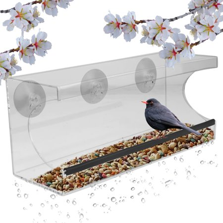 Window Alert Bird - Evelots Window Bird Feeder With Drain Holes and 3 Suction Cups, Large,Clear