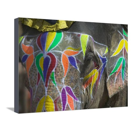 Elephant Decorated With Colorful Painting Jaipur Rajasthan India Stretched Canvas Print Wall Art By Keren Su