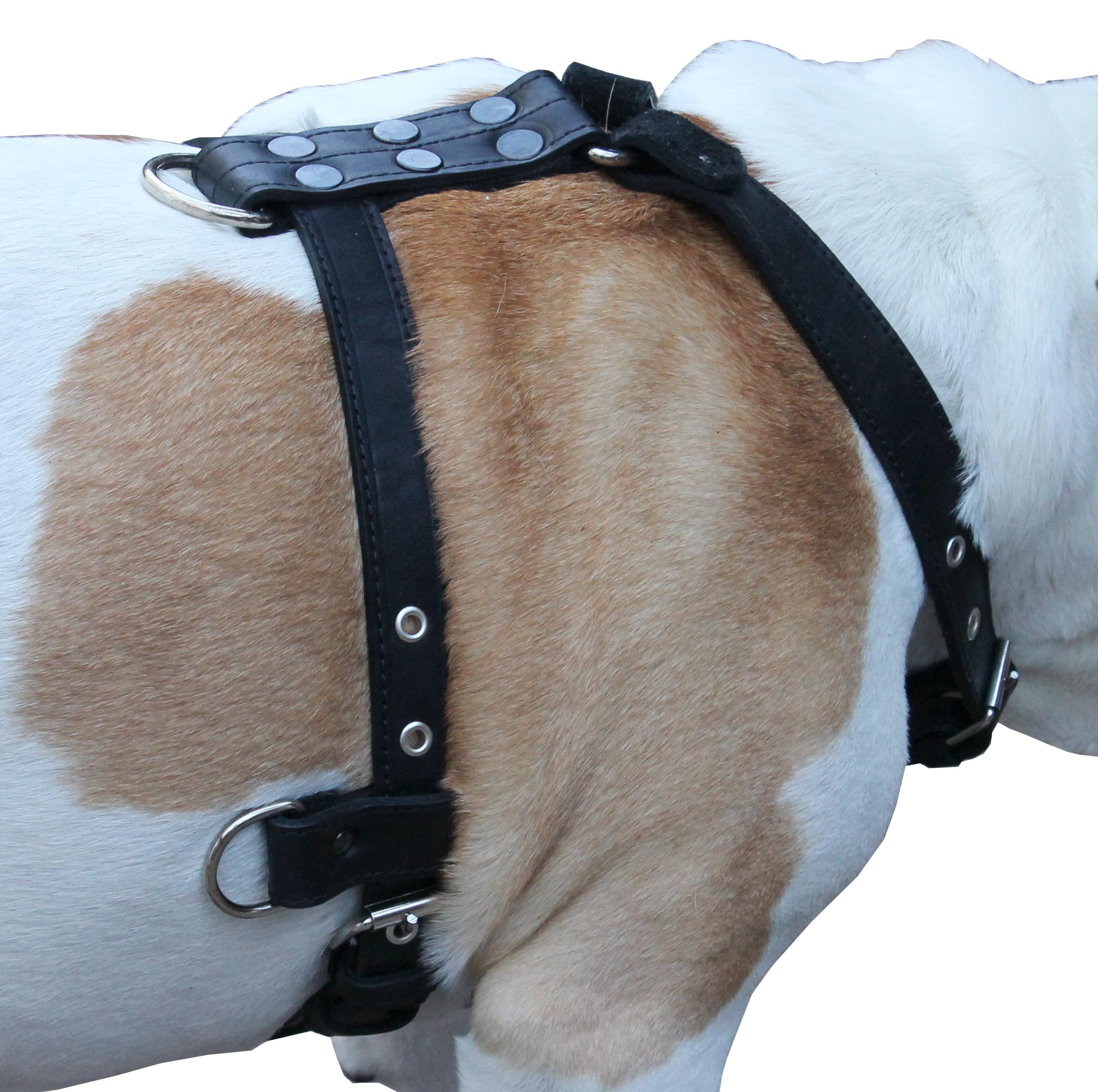 "Genuine Leather Dog Harness Medium to Large 25""-32"" Chest, 1"" Wide Adjustable Straps (Black)"
