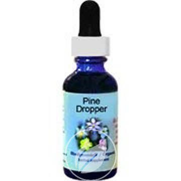 Pine Essence (Flower Essence Services Pine Dropper 0.25 Ounce, Pack of 2)