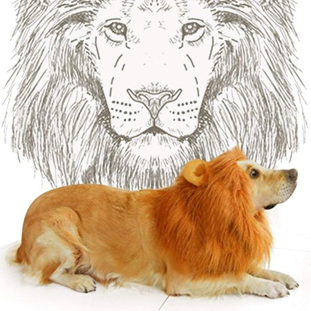 lion mane costume with ears cute halloween pet costume for yorkies maltese puppies