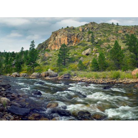 Rapids with cliffs above Cache La Poudre River Colorado Poster Print by Tim Fitzharris ()
