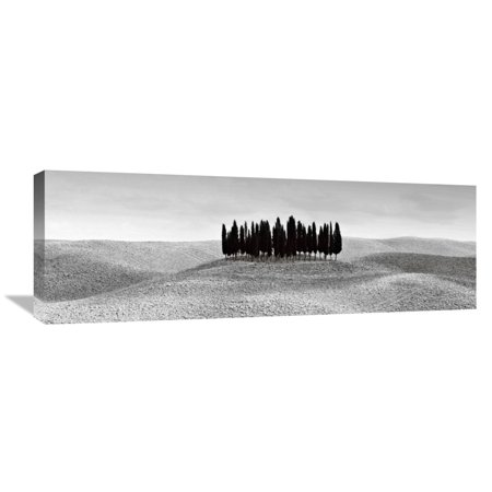 - Global Gallery Ilona Wellmann,'Cypresses in Tuscany' Stretched Canvas Artwork