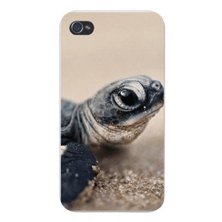 Apple Iphone Custom Case 4 4s Plastic Snap on - Baby Turtle Face w/ Big Black Eye