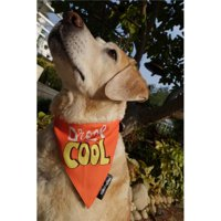 Heads Up for Tails HUFTAC078 Drool Is Cool Dog Bandana, Medium