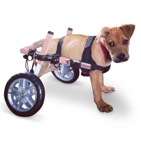 Dog Wheelchair - For Small Dogs 8-25 lbs - By Walkin'