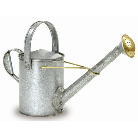 Image of Garden Waterer w Long Neck in Steel