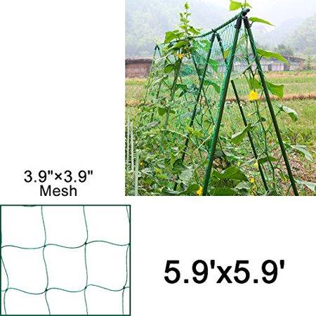 EcoTrellis Nylon Vine and Veggie Trellis Netting Plant Support - Vine Trellis