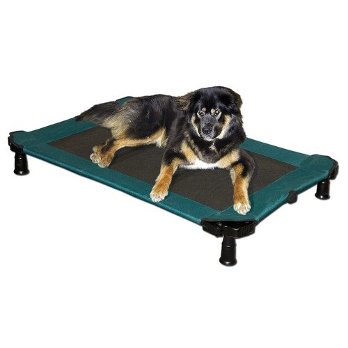 Pet Gear Portable Pet Cot in Green (Large)