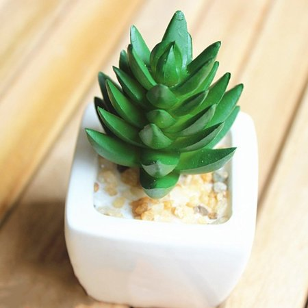 Simulation Succulents Artificial Green Plants Fake Home Garden Decoration - Fake Sideburns
