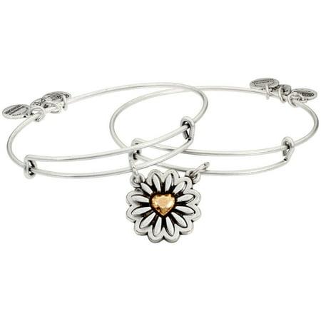 Alex And Ani You are My Heart Set Of 2 Bangle Bracelets A18SETYHTTRS Jewelry Bangle Vintage Bracelet