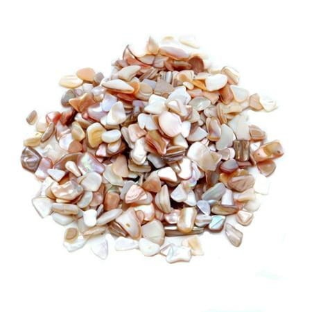 Natural Vase Fillers Pearlized Large Crushed Shells Walmart