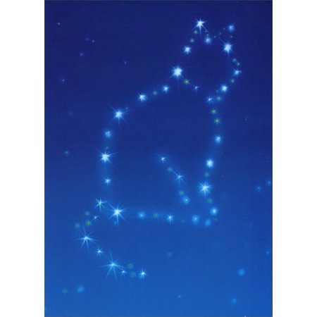 Avanti Press Cat Constellation Pet Sympathy Card