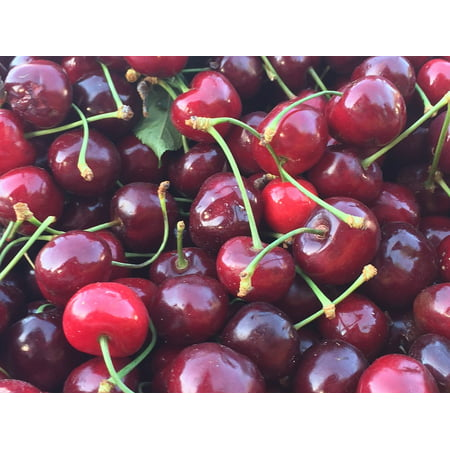 Fruit Organic Cherries Fresh Market Red Berries Poster Print 24 x 36