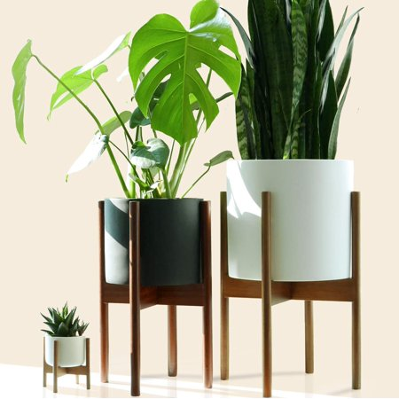 - High Supply Mid-Century Modern Plant Stand - Acacia - EXCLUDING 10