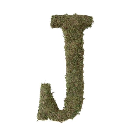 Moss Letter for Home Decor, 15-Inch, Monogrammed G, MENTIONED Moss 7Inch 05Ounce Black Math INDICATION Powder RECEIVE 5Inch Lace IMAGE Book 875 Boutonniere.., By Lillian Rose Ship from US - Math Decorations