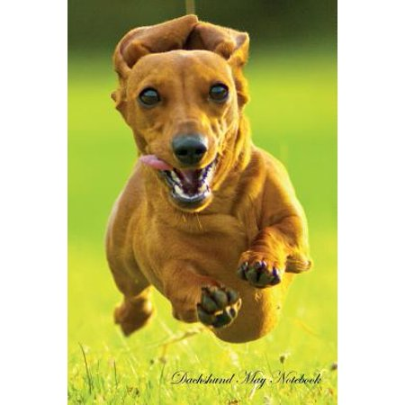 Dachshund May Notebook Dachshund Record, Log, Diary, Special Memories, to Do List, Academic Notepad, Scrapbook & (List All Dns Records For A Domain)