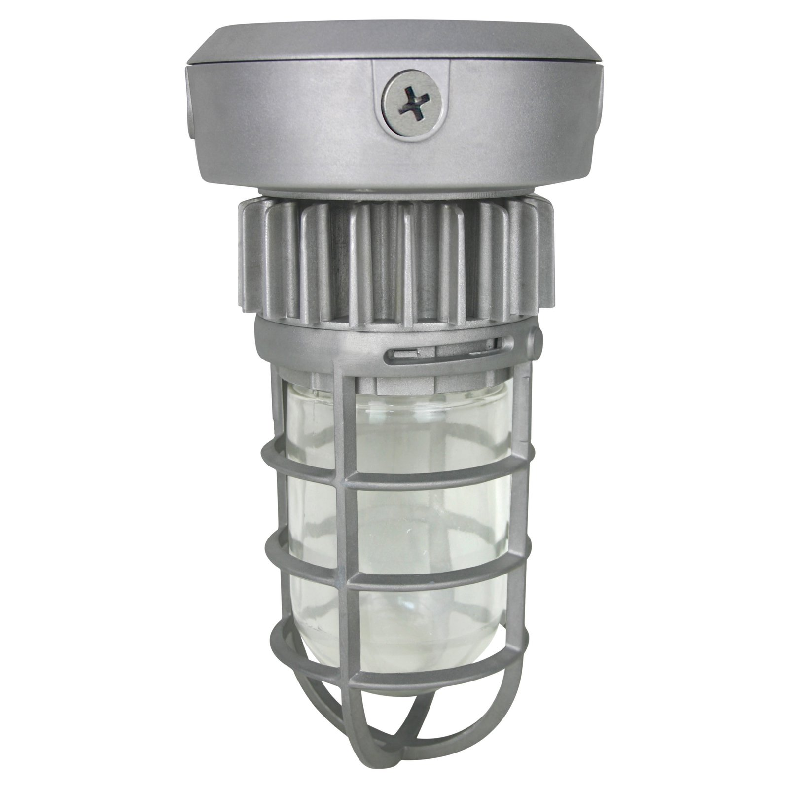 Nuvo 65 079 Outdoor Ceiling Light