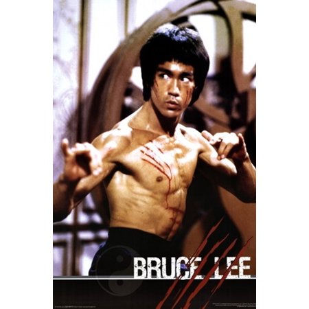 Bruce Lee - Fight Poster Print (24 x 36) (Bruce Willis Poster)