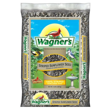 Large Sunflower Garden (Wagner's 62028 Striped Sunflower Seed, 5-Pound Bag, A favorite of songbirds everywhere particularly large beaked birds such as Jays, Cardinals and Grosbeaks By)