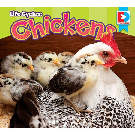 Life Cycle Of Chicken (Life Cycles: Chickens - eBook)