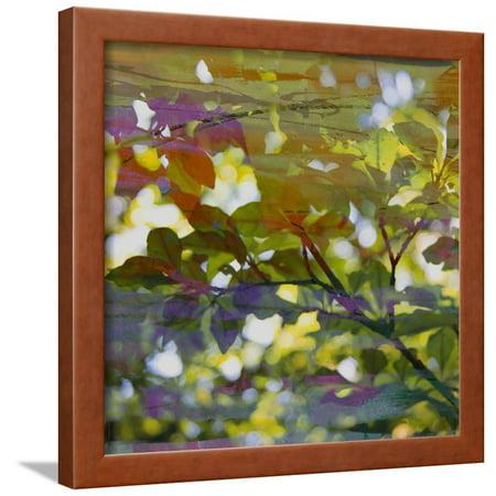 Abstract Leaf Study II Framed Print Wall Art By Sisa Jasper