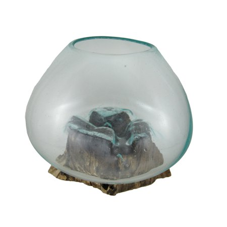 Glass On Teak Driftwood Decorative Vase/Plant - Decorative Terrarium
