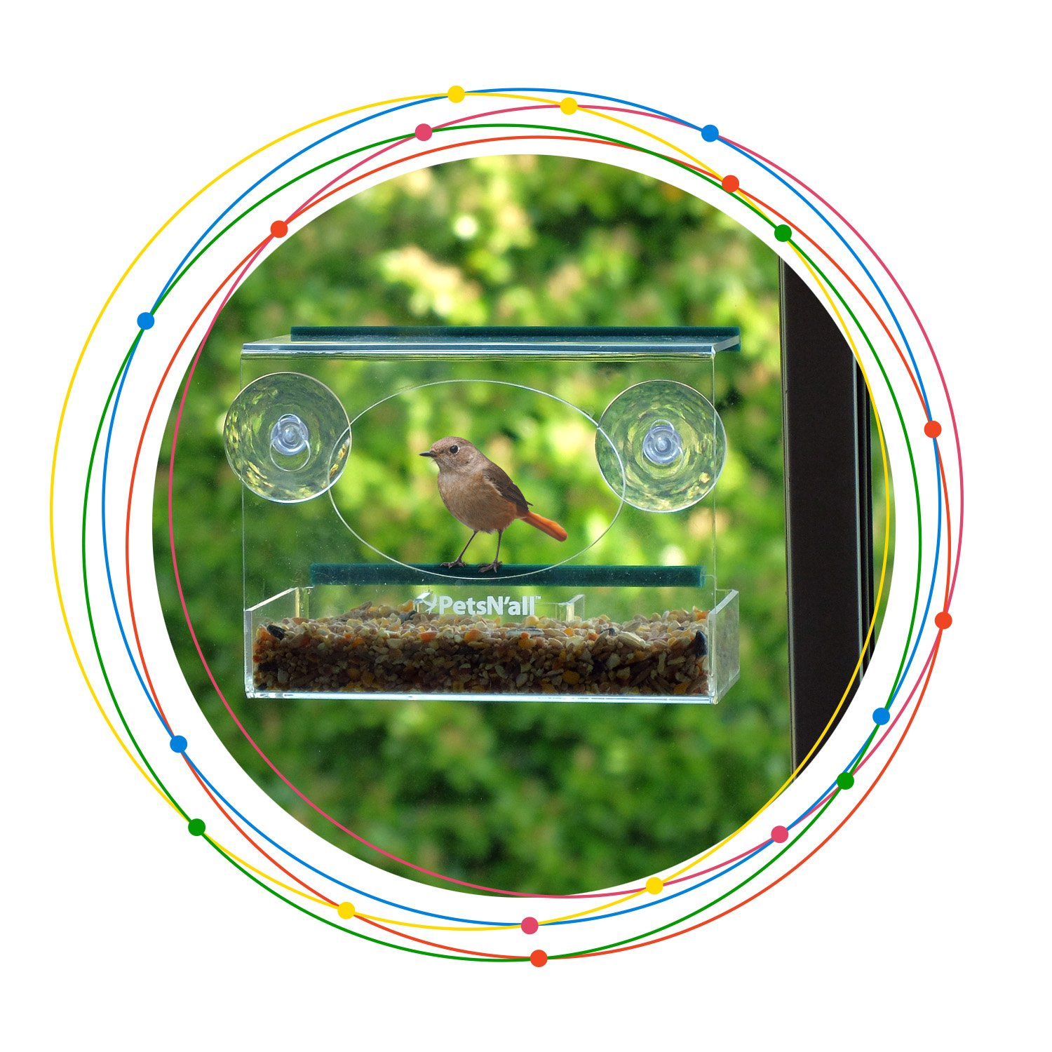 Clear Window Birdfeeder Small Clear View Birdfeeder, Squirrel-Proof Seed Protection... by Aspectek