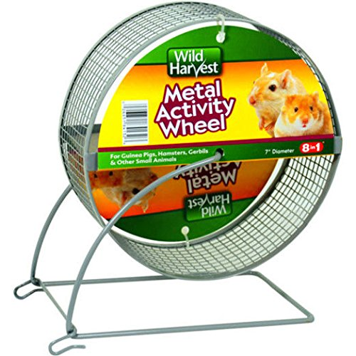 "Wild Harvest 7"" Metal Activity Wheel for Small Animals, 1-Count"
