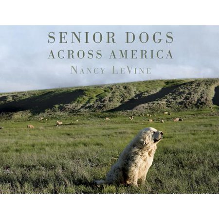 Senior Dogs Across America : Portraits of Man's Best Old