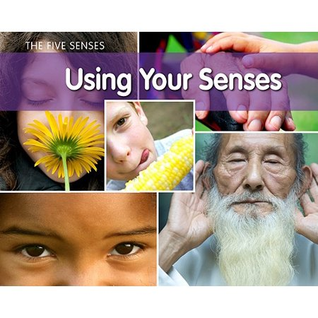 Using Your Senses