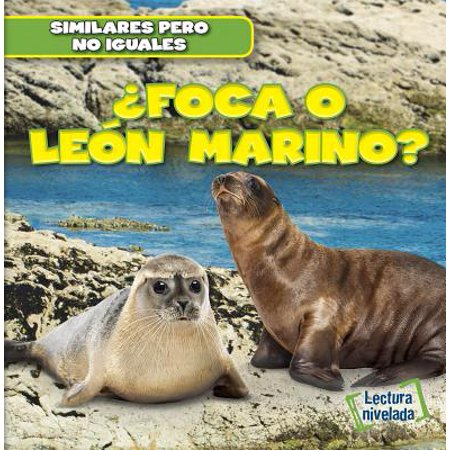 Foca O Leon Marino? (Seal or Sea (Sea Lion Seal)