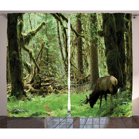 Rainforest Decorations Curtains 2 Panels Set, Roosevelt Elk In Rainforest Wildlife National Park Washington Antlers Theme, Living Room Bedroom Accessories, Gift Ideas, By - Forest Themed Room Ideas