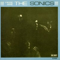 Here Are Sonics (CD)